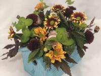 Flower spotlight: chrysanthemum daisies