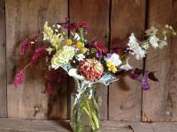 Flower spotlight: Kiss Me Over the Garden Gate