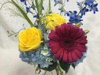 Flower spotlight: gerbera daisies