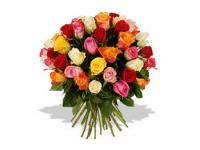 Choosing The Right Roses For Any Occasion