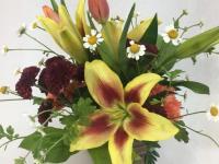 Flower spotlight: Asiatic lilies