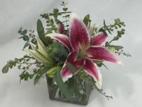 Flower spotlight: Oriental stargazer lily