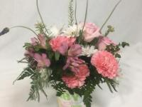 Flower spotlight: carnations