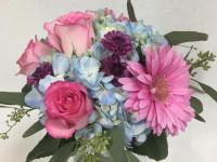 Flower spotlight: hydrangeas