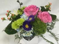 Flower spotlight: Green ball dianthus