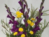 Flower spotlight: gladiolus
