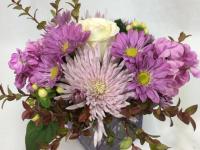 Flower spotlight: chrysanthemums