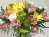 Flower spotlight: alstroemeria