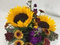 Flower spotlight: Sunflowers