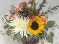 Flower spotlight: spider mums