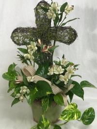 Pothos Ivy with cross