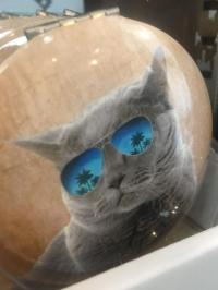 cat movie star compact mirror