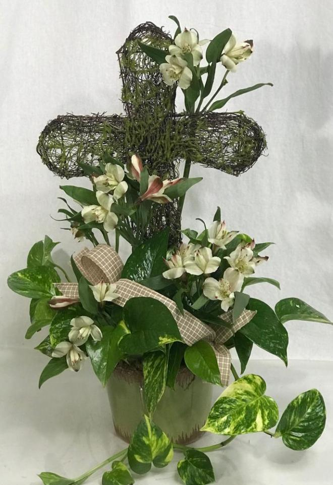 Pothos Ivy with cross