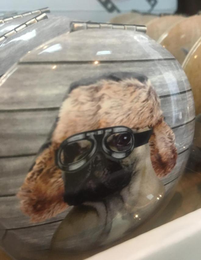 dog movie star compact mirror